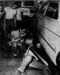 terrapins shop class 1953
